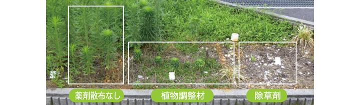 植物調整剤